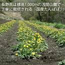 imageCAFGTAT0.jpg