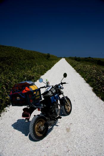 宗谷丘陵の白い道にて