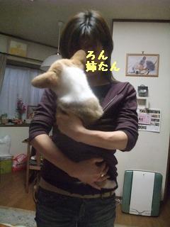 2008_0423Laniちゃんの日々0048.jpg
