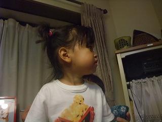 2008_0721彩華&今朝のLani0018.jpg