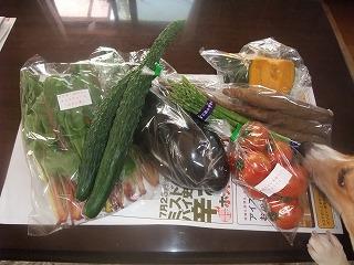 2008_0724初体験&野菜0036.jpg