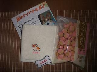 2008_1018あっちゃんチロル&服0009.jpg
