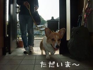 2010_06020003.jpg