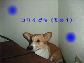 2010_06280015.jpg
