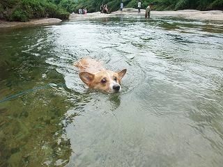2010_0811蛇喰峡0011.jpg