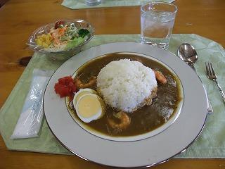 2011_0417岡山でのラン0100.jpg