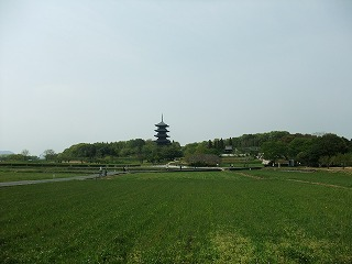 2011_0430御津のランと国分寺0040.jpg