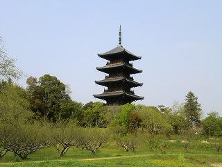 2011_0430御津のランと国分寺0235.jpg