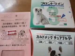 2011_0517病院にて0011.jpg