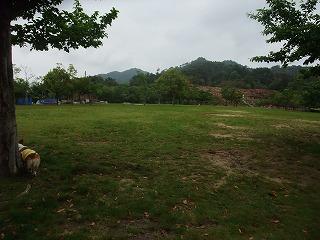 2011_0523森林公園にて0011.jpg