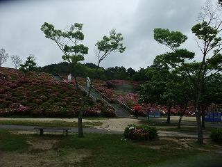 2011_0523森林公園にて0017.jpg