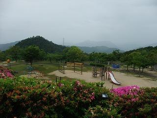 2011_0523森林公園にて0021.jpg