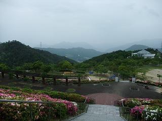 2011_0523森林公園にて0023.jpg