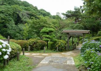 2012.06.23 入り口 新江戸川公園