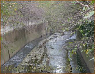 2012.09.18 神田川