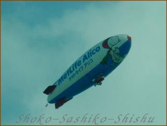 2012.10.22 飛行船 小菊