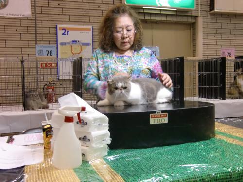 kosuke+show+018_convert_20120507023906.jpg