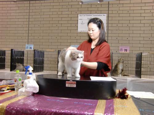 kosuke+show+024_convert_20120507024017.jpg