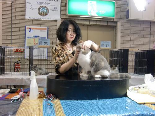 kosuke+show+060_convert_20120507024405.jpg