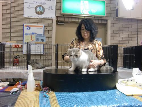 kosuke+show+061_convert_20120507024443.jpg