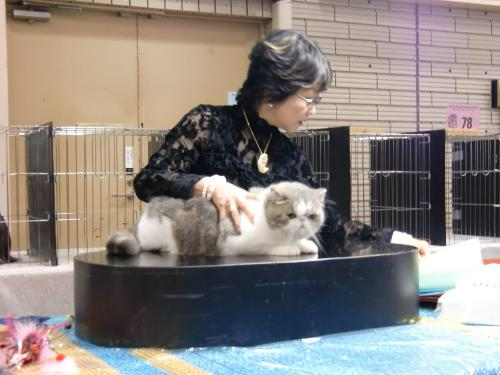 kosuke+show+142_convert_20120515215717.jpg