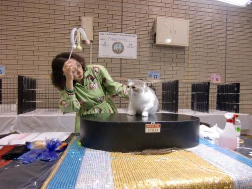 kosuke+show+173_convert_20120515220159.jpg