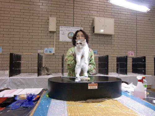 kosuke+show+175_convert_20120515220301.jpg