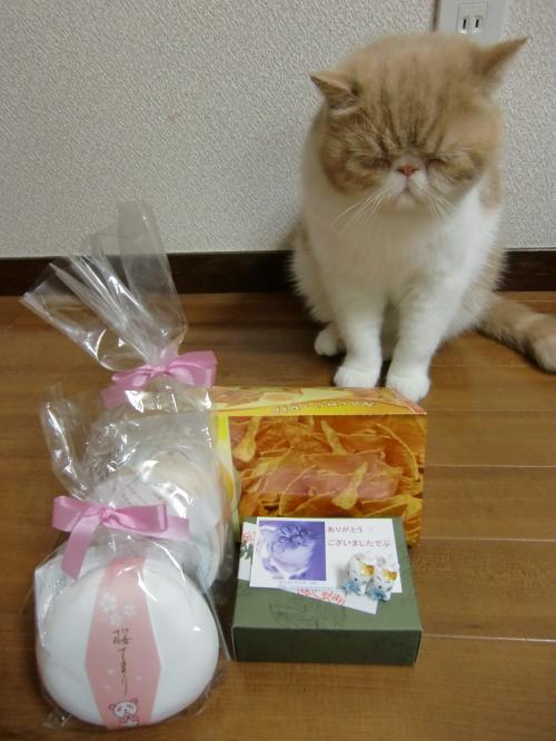 kosuke+show+211_convert_20120515220550.jpg
