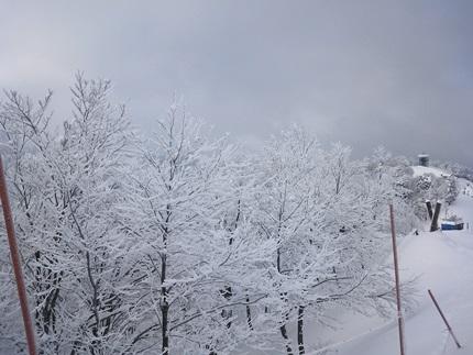 らいちょうスキー1