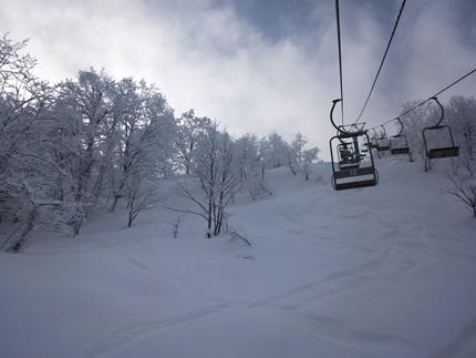 らいちょうスキー2