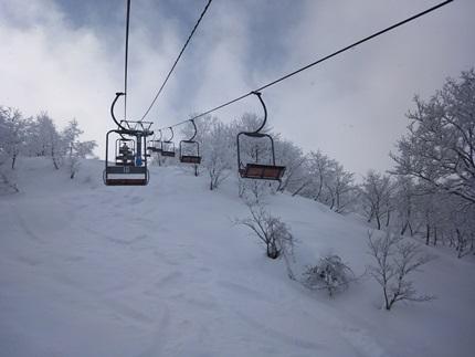 らいちょうスキー3