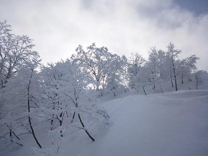 らいちょうスキー4