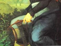 ベートーヴェンの膝を照らす(部分)