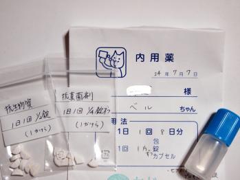 抗生物質 & 抗真菌剤 &点耳液