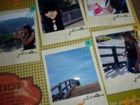241_convert_20120815135041.jpg