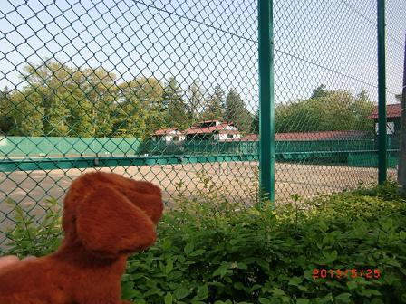 軽井沢の有名なテニスコート