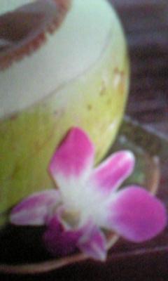 Image609_20120829094941.jpg