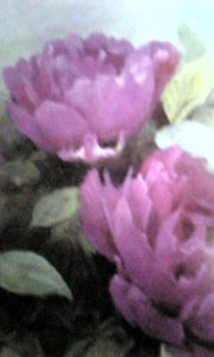 Image851_20121129094124.jpg