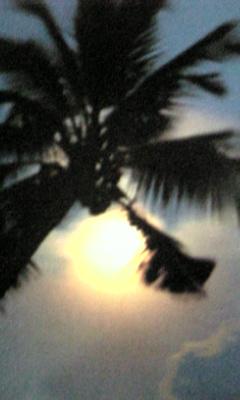 Image853_20121129094110.jpg