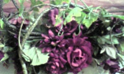Image891_20121217095030.jpg