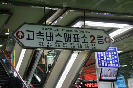 140201yoju (7)