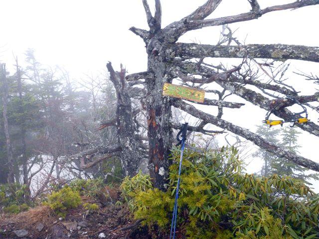 5.景鶴山頂