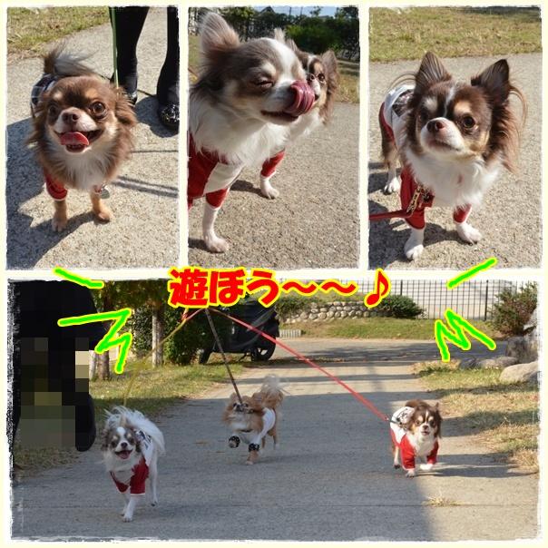 2page_20121108202249.jpg