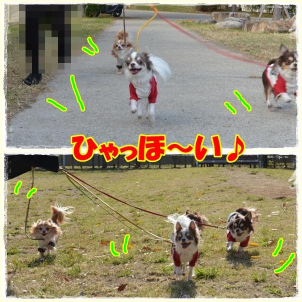 3page_20121108202249.jpg