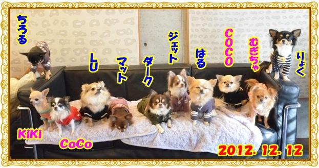 DSC_3204_20121214205642.jpg