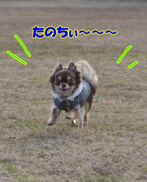 DSC_3714.jpg