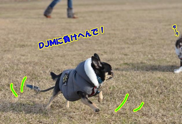 DSC_3719.jpg