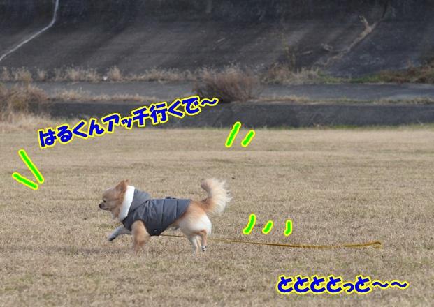 DSC_3720.jpg