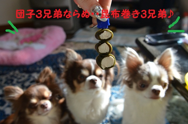 DSC_3831.jpg