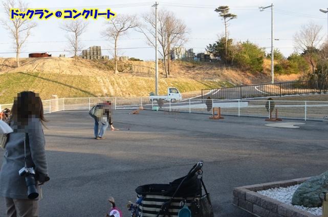 DSC_4094_20130109160014.jpg